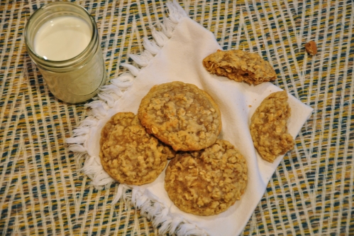 plain oatmeal cookie